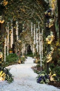 A fantasy wedding path into the forest... Photo property of VF.com
